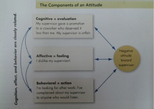 Components of an Attitude
